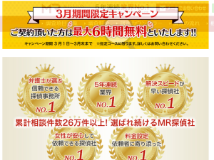 MISSION RESEARCH総合探偵社興信所公式サイト